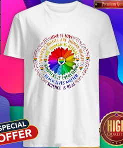 Love Is Love Women's Rights Are Rights Kindness Is Everything Shirt