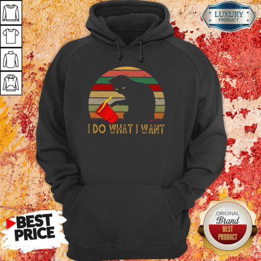 Sunset Cat I Do What I Want Vintage Hoodie